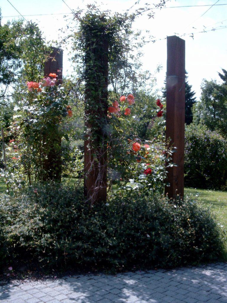 Vertikales Grün - die etwas andere Pergola